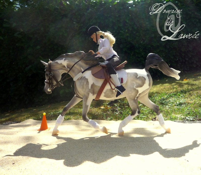 R sultats du concours photo domaine equestre de bois le comte - Decor shooting photo ...